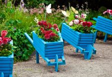 Choices for decoration of your garden